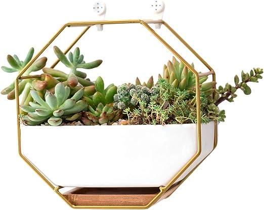 Maceta geométrica para colgar en la pared, diseño moderno de ...