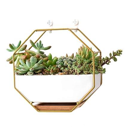 Wand Pflanztopf Hängendes Pflanzgefäß Luftpflanzen Metall Blumentopf