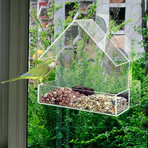SAFETYON Bird Feeder - Birdhouse - Window or Hanging Bird Feeder - 2in1 functions - Clear Acrylic with Drain Holes Strong Suction Cups - Squirrel Resistant and Weatherproof Design For - Feeder Birdhouse