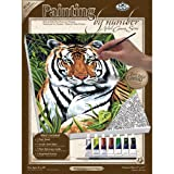 Royal & Langnickel Painting by Numbers Small Canvas Painting Set, Tiger in Hiding