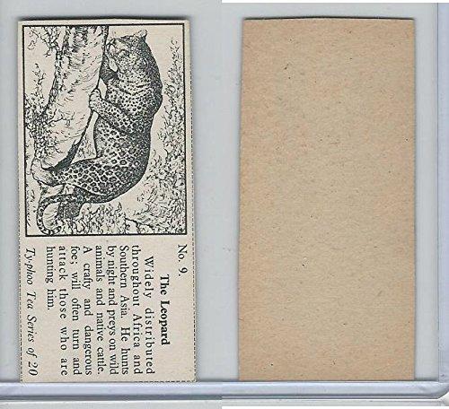 T0-0 Typhoo Tea, Wild Animals, 1955, 9 Leopard