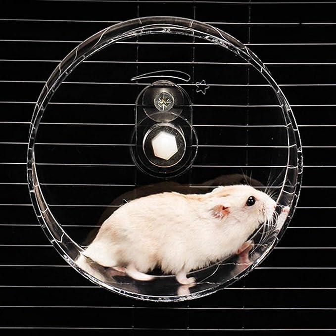 SimpleMfD Transparente Acrílico Hamster Rueda para Correr Cinta ...