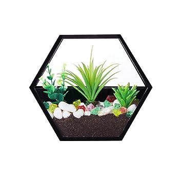 Pot De Fleurs Mural Nhsunray Vase De Fleur Mur Plantes En Pot