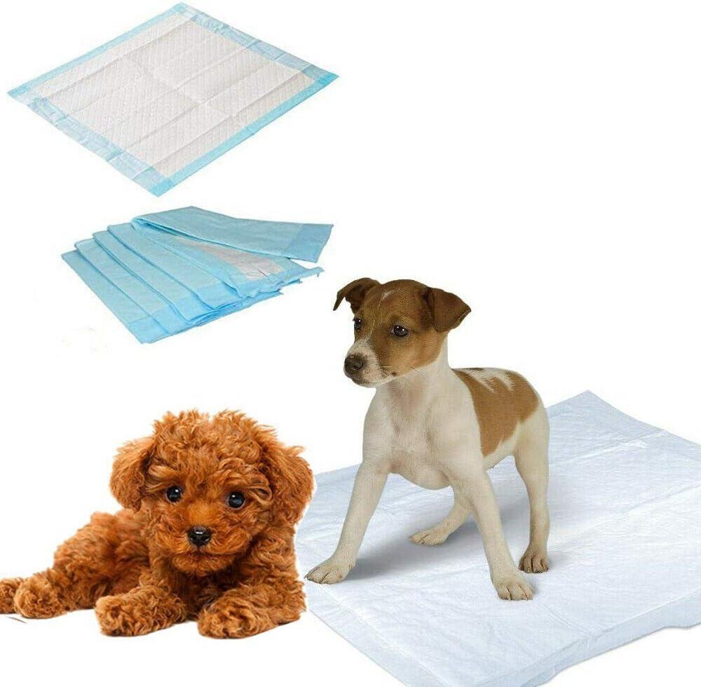 2 x mentalshop Confezione di TAPPETINI ASSORBENTI per Cani E Gatti TRAVERSINE 60x60 7510