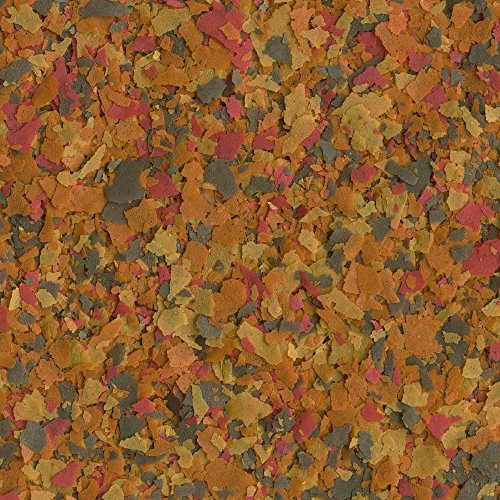 TetraColor Tropical Flakes with Natural Color Enhancer