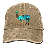 LLama Lama Glama Galaxy Vintage Washed Dyed Cotton Twill Low Profile Adjustable Baseball Cap