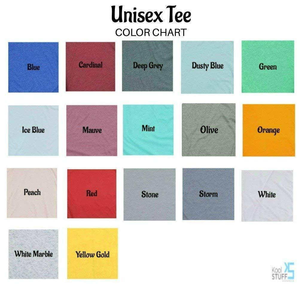 Dunder Mifflin Paper Company shirt, The Office Tv show tshirt, The Office t shirt, Dwight Schrute, mens tshirt, men t-shirt