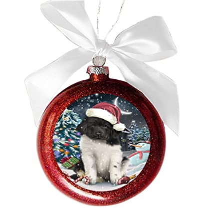 Have a Holly Jolly Christmas Happy Holidays Newfoundland Dog Red Round Ball Christmas  Ornament RBSOR48326 - Amazon.com: Have A Holly Jolly Christmas Happy Holidays Newfoundland