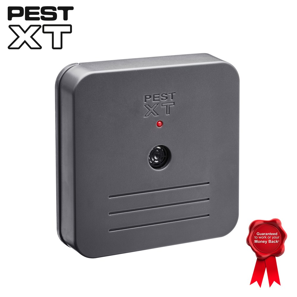Battery Operated Ultrasonic Indoor Repeller, Targets Rats, Mice, Spiders & Small Pests Pest XT (Single Pack) Clifford James