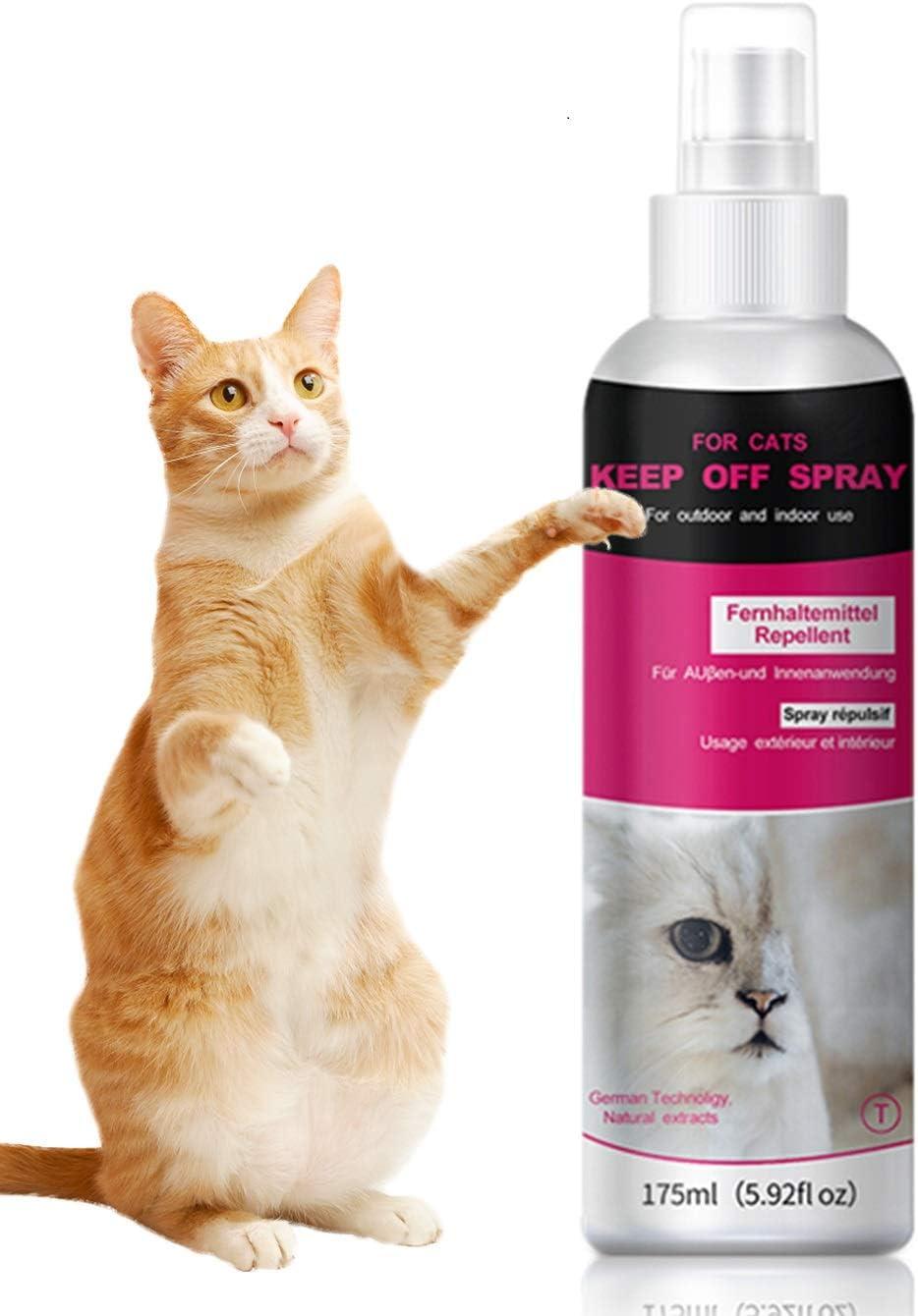 QUTOP Cat Scratch Deterrent Training Spray, Cat Repellent Spray for Indoor and Outdoor Use - 175ml