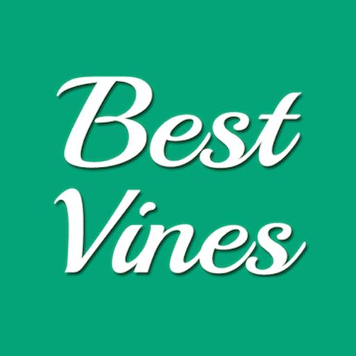Best Vines: Hilarious Vine Videos