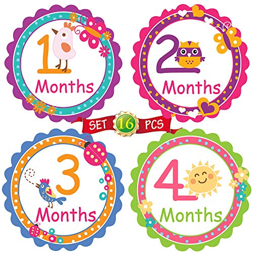 Baby Month by Month Stickers for Baby Girl & Boy | Unisex Milestone Stickers for Each Month [Set of 16] -
