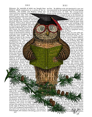 Owl Reading On Branch by Fab Funky Art Print, 11 x 14 inches ()