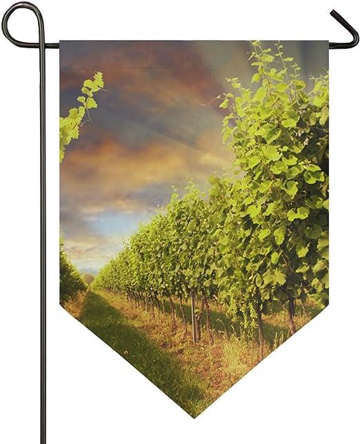 XiangHeFu Bandera de jardín Viñedo con Cielo y Rayos de Sol poniente 12x18.5 Pulgadas (12