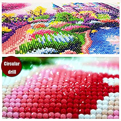Ingzy 5D Diamond Painting Kits for Adults Full Drill Dandelion,DIY Round Drill Art Kits(30x30CM/12x12in): Arts, Crafts & Sewing