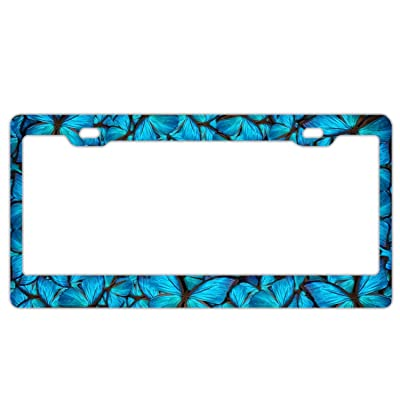 DZGlobal Blue Butterflies Car Plate Tag Accessories Metal License Plate Frame: Clothing