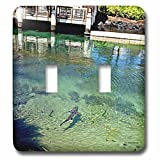 Sandy Mertens Hawaii Travel Designs - Shark in Pond by Restaurant at the Resort on the Big Island of HI - Light Switch Covers - double toggle switch (lsp_232749_2)