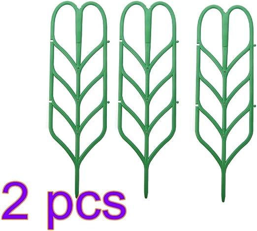 Planta de jardín de apoyo y planta de apoyo de rejilla para plantas de maceta, bobinado, escalada, jardín, verde, 6 unidades: Amazon.es: Jardín