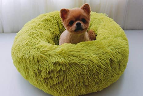 Novopus: Cama para Mascotas Gatos Perros pequeños y medianos ...