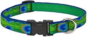 Lupine 3/4 Inch Tail Feathers Adjustable Dog Collar