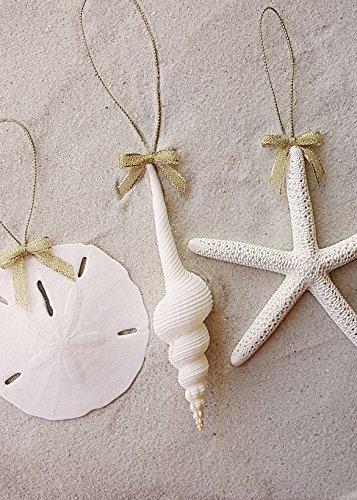 tumbler home white spindle seashell pencil starfish christmas ornament