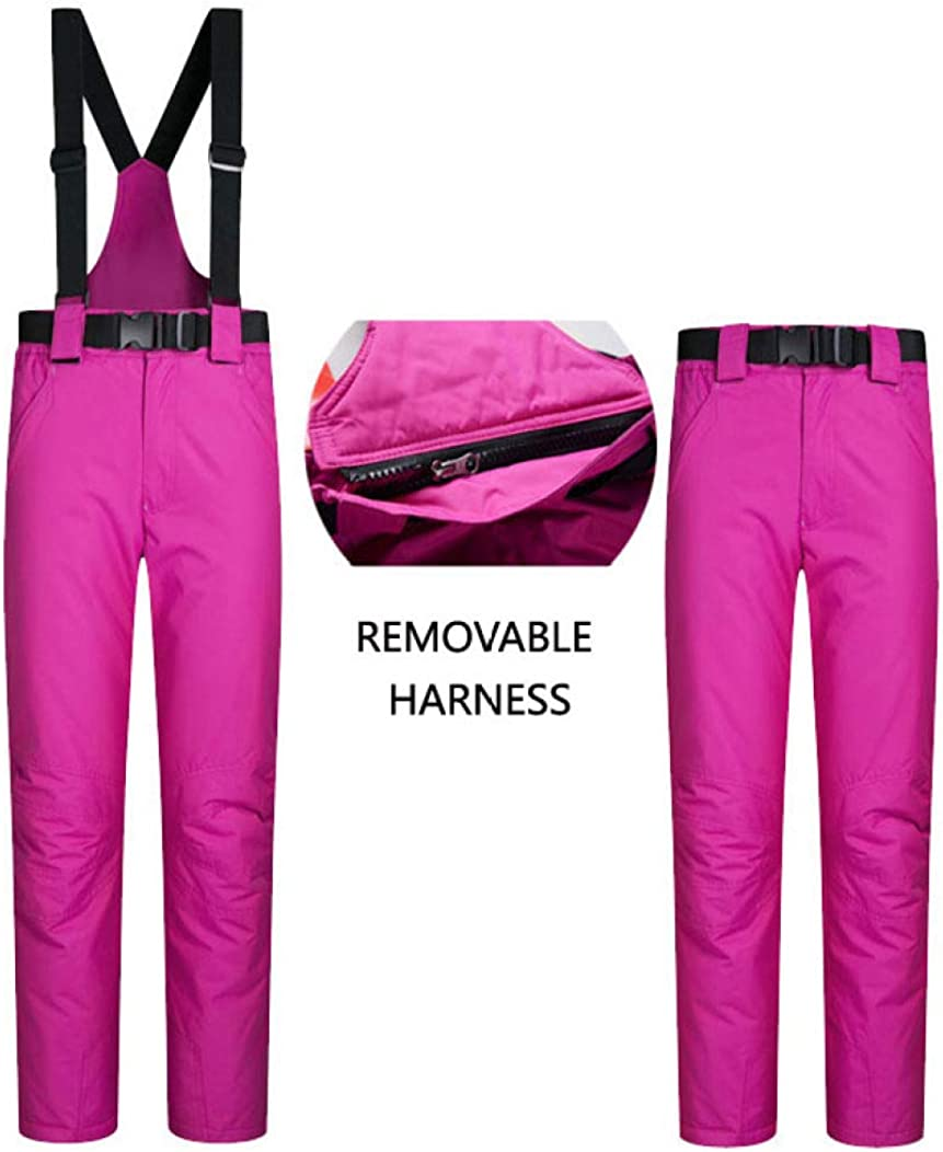 PsemesP Womens Ski Jackets and Pants Waterproof Warm Ski Suits Women Snow Snowboarding Cross Country Skiing Clothes SF And Pink