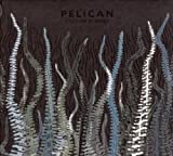 City of Echoes by PELICAN (2007-06-05)