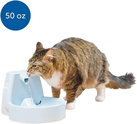 PetSafe Drinkwell Cat and Dog Water Fountain