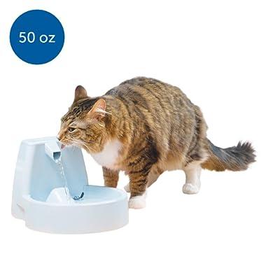 PetSafe Butterfly Dog & Cat Water Fountain