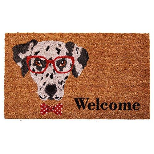 (Home & More 121611729 Mr. Belvodore Doormat, 17