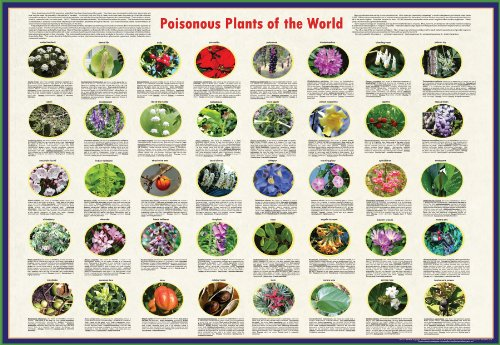 """American Educational Poisonous Plants Poster of The World, 38"""" Length x 26-1/2"""" Width"""