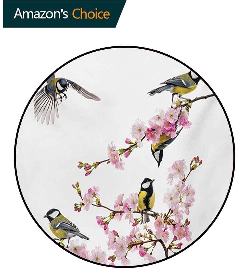 Birds Carpet Gray Round Area Rug,Group of Cute Hummingbirds On Flowering Branch Best Friends Peace Illustration Home Pattern Floor Seat Pad Home Decorative Indoor,Round-71 Inch