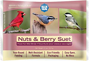 11oz Year Round Premium Nuts & Berry Bird Suet Single Cake