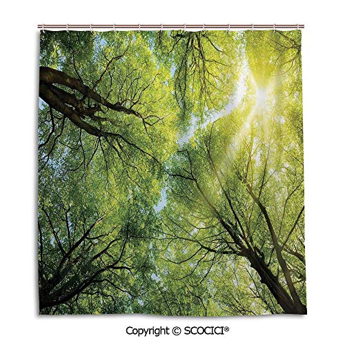 Simple bathroom curtain personality privacy convenience,66X72in,Farm House Decor,The Warm Spring Sun Through the Canopy of Tall Beech Trees Romantic Scene,Green Yellow,Used for bathing privacy