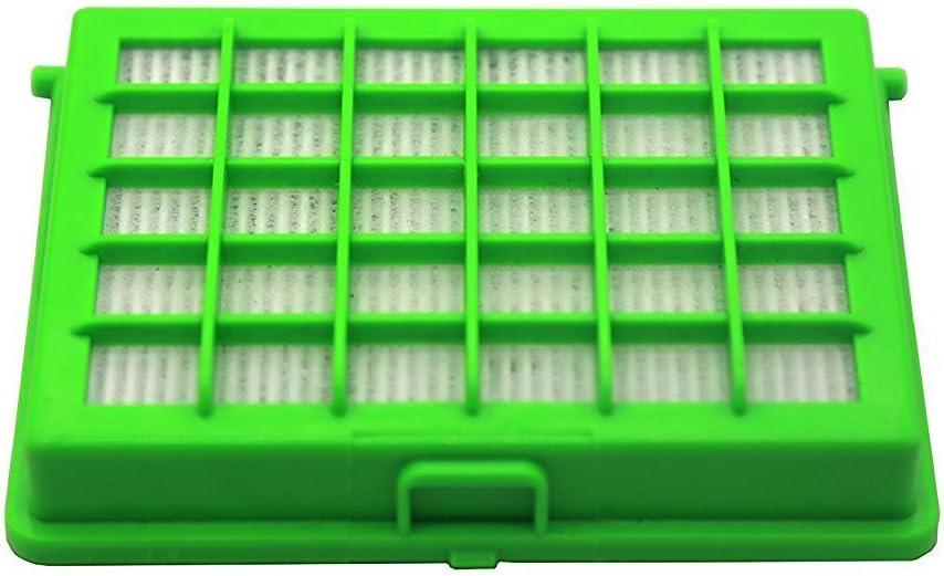 Green Label Filtro HEPA para Aspiradoras Rowenta y Moulinex Compacteo Ergo, City Space, Accessimo. Reemplaza a ZR004501: Amazon.es: Hogar