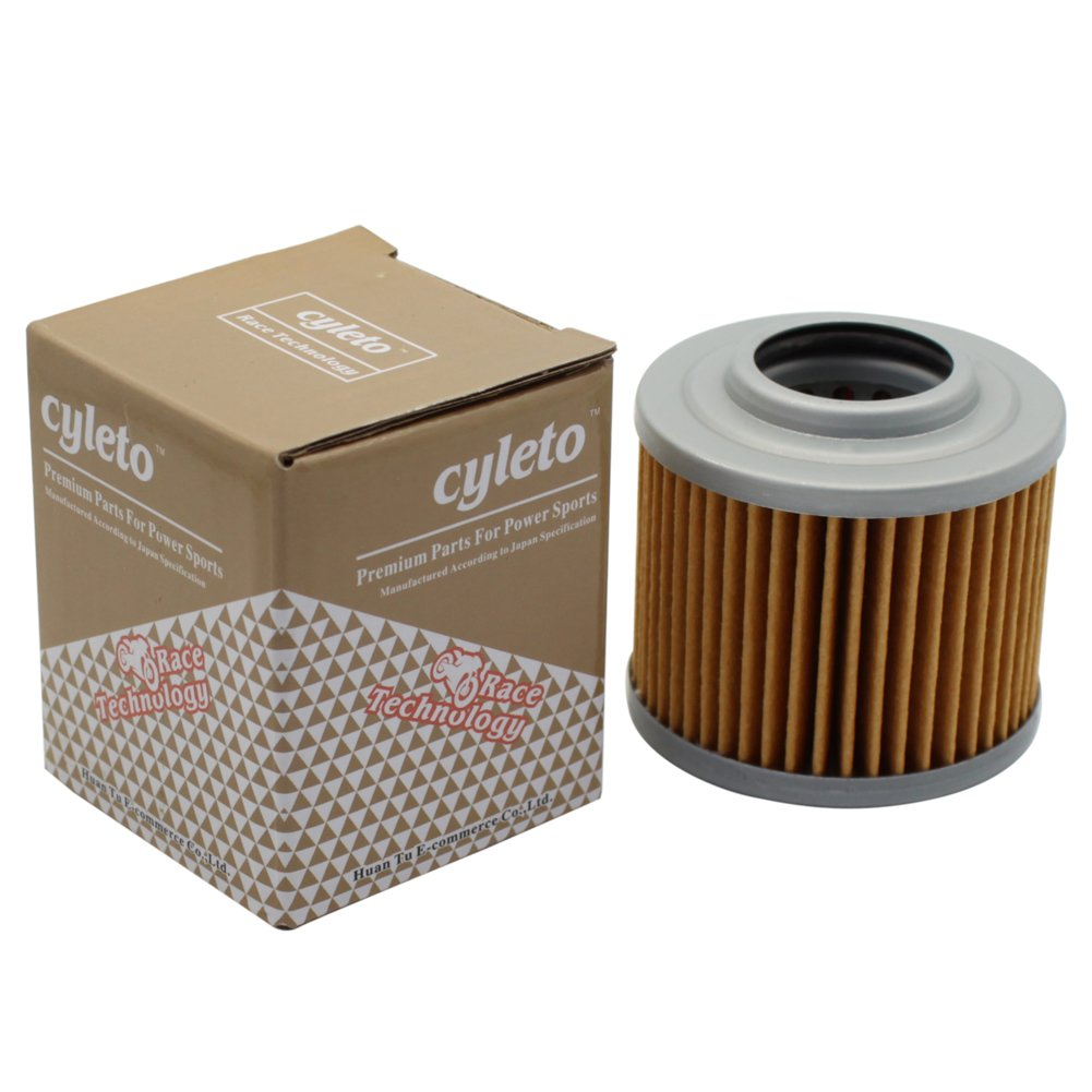 Pack of 2 Cyleto Oil Filter for BMW F650GS DAKAR 650 2001 2002 2003 2004 2005 2006 2007//F650 GS 2000 2001 2002 2003 2004 2005 2006 2007