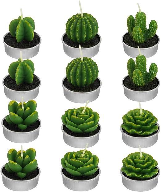 Yakiki 12 Velas arom/áticas sin Humo de Cactus Velas de t/é Lindo Verde Mini Plantas suculentas Velas para Fiesta de cumplea/ños SPA Boda decoraci/ón del hogar Regalo