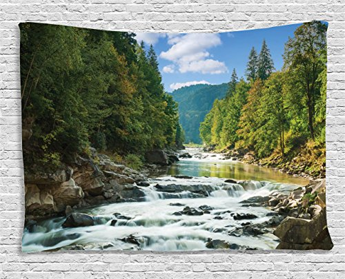 - Ambesonne Lake House Decor Collection, mountain river along forest waterfall rocks stream travel destination hiking sunny , Bedroom Living Room Dorm Wall Hanging Tapestry, 80W X 60L Inch