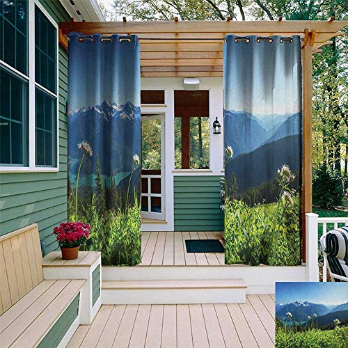 leinuoyi Nature, Outdoor Curtain Panels Set of 2, Diablo Lake Washington Mountains Dandelions Thistle Flowers Wilderness Image, for Privacy W96 x L96 Inch Green Sky Blue