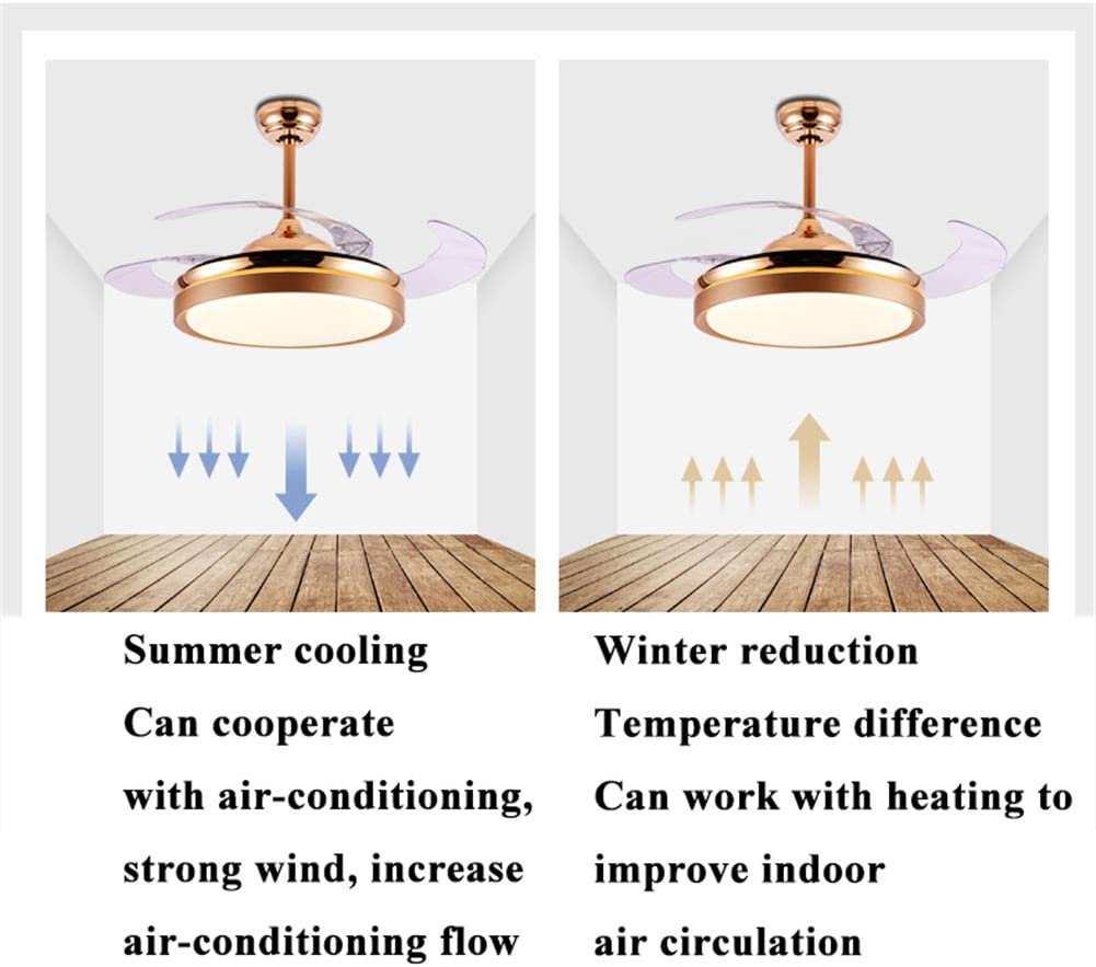 Ventilatore da soffitto di lusso LED LIVING SALA da pranzo Cucina Lampada Illuminazione remoto Cooler