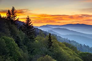Great Smoky Mountains National Park Sunrise Photo Photograph Cool Wall Decor Art Print Poster 36x24