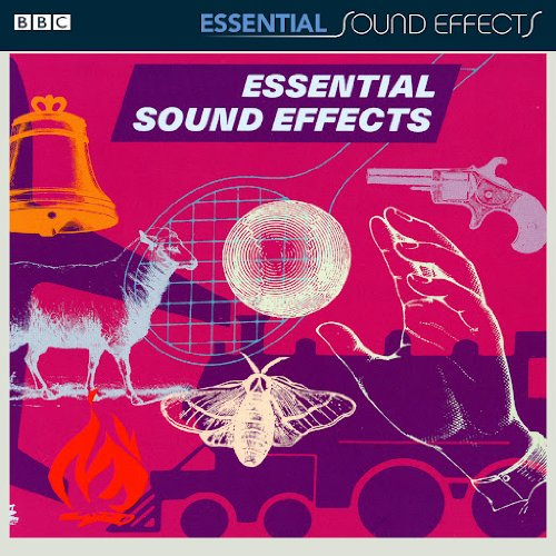 BBC Max Manufacturer direct delivery 52% OFF Essential Effects Sound