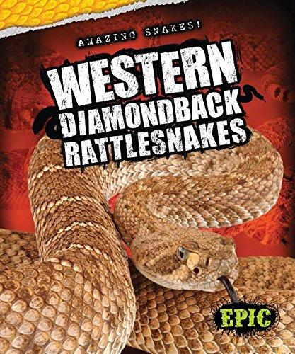 Western Diamondback Rattlesnakes (Amazing Snakes!) PDF
