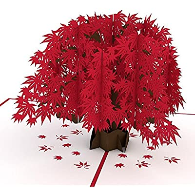 lovepop-japanese-maple-pop-up-card