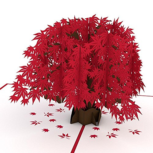 Lovepop Japanese Maple Pop Up Card, Tree Card, Nature Card, 3D Cards, Foliage Card, Pop Up Birthday Card, Greeting - Pop Heart Card Out