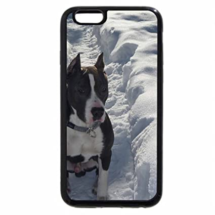 coque iphone 6 amstaff