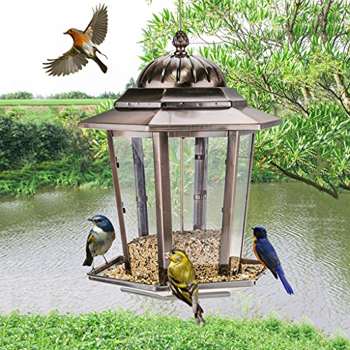 More Birds Hummingbird Feeder Hanging Gazebo Wild Bird Feeder Attracts Birds And Outdoor Bird Watching. Cacoffay
