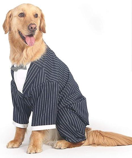 YSSY Ropa para Mascotas, Traje de Moda para Perros Grandes ...