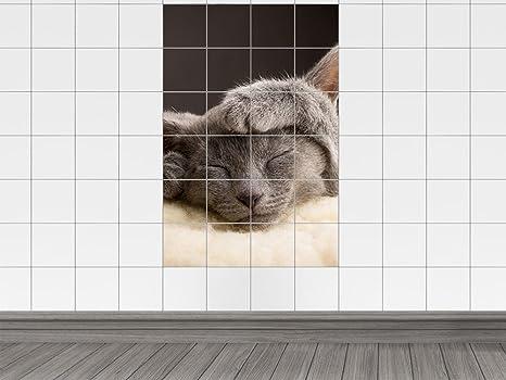Piastrelle adesivo piastrelle immagine gatto dormire zampa gattino
