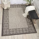 Nourison Garden Party GRD03 Ivory/Charcoal Indoor/Outdoor Area Rug 5 Feet 3 Inches 7 Feet 3 Inches, 5'3'' X7'3